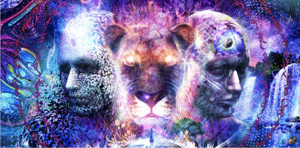 Mindfulness Kalani EVOLVE podcast